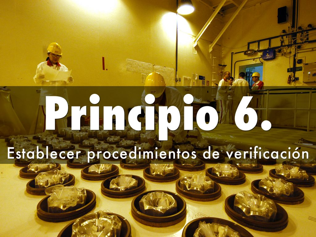 principio 6 haccp avanzado